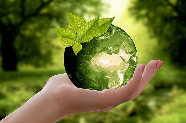 Gruen versichert: ökologischer digitaler Versicherungsmakler